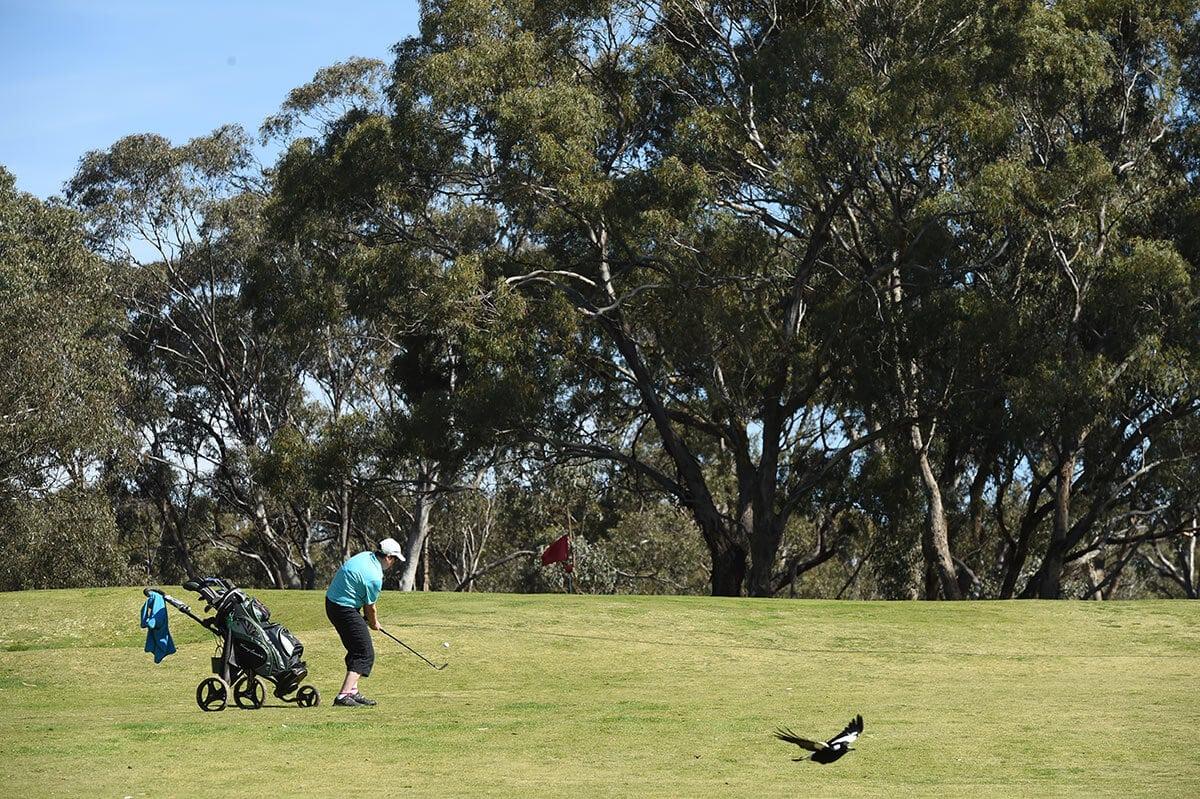 Axedale Golf Club Victoria Australia